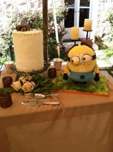 Casey cake photo